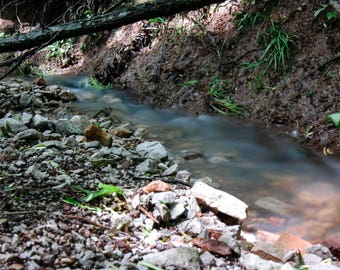 Nature Photo of A Creek