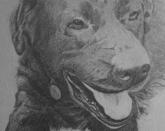 Bespoke Portrait, Fine Pencil Drawing, A4 size available