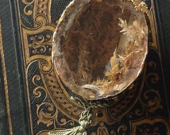 Rare antique french Lourdes reliquary in a nutshell. Small reliquary religious diorama of the 19th.