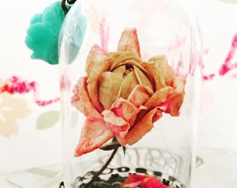 Pink rose in dome