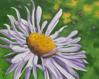 Western Aster, Set of 5 Note Cards with Envelopes from Original Watercolor Painting