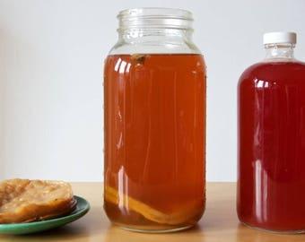 Kombucha tea SCOBY Kit, live culture to grow at home. Big Size  - Guaranteed
