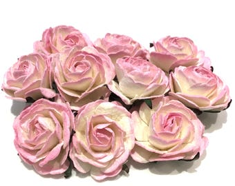 Light Pink 2 Tone Heritage Roses Hr006