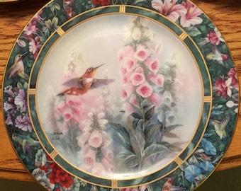 Lena Lui, Rufous Hummingbird Plate