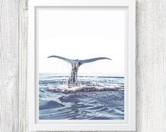 Dolphin Fin Print, Ocean Wall Art, Wildlife Photography, Water Photo Art, Modern Home Decor, Large Printable Poster, Minimalist, #251
