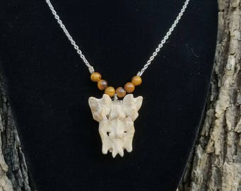 Raccoon sacrum and tigers eye necklace, obscure jewelry, oddities and curiosities