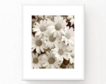 Sepia Daisies - Sepia Download, Digital Download, Sepia Decor, Printable Wall Art, Sepia Wall Art, Daisy Print, Daisies, Daisy Printable