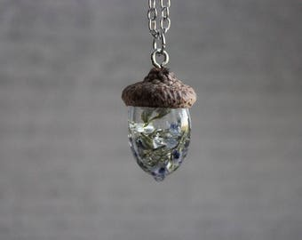 Necklace + pendant real Acorn cupule (hat) and resin inclusion of rare German Blues