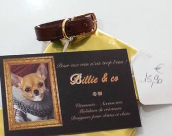 Leather small dog or cat collar