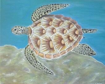"""Original painting """"Sea turtle"""" 40 x 50 cm"""