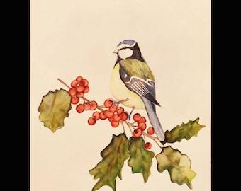 Watercolor and his bird mistletoe