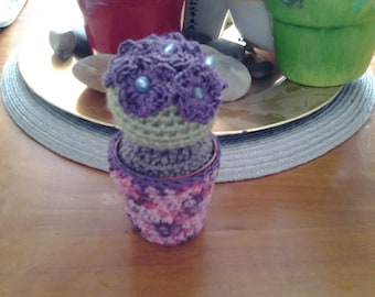 Cactus with crochet flowers