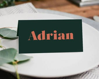 Wedding Place Cards | Place Cards | Table Place Cards | Downloadable Place Cards | SAMARA - Place Cards