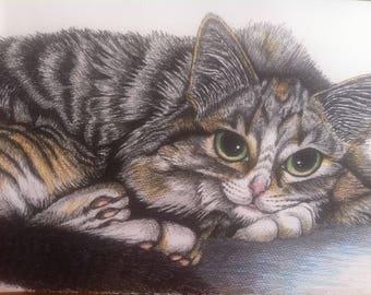 """Suzie"""" original cat art"""