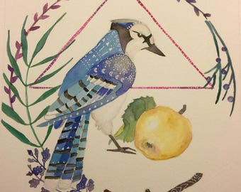 Bluejay and Apple