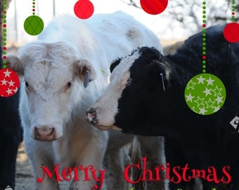 Merry Christmas from the Herd