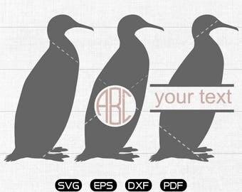 Penguin Svg, Penguin Clipart, Monogram Frame cricut, cameo, silhouette cut files commercial & personal use