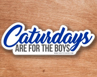 Caturdays are for the boys Sticker