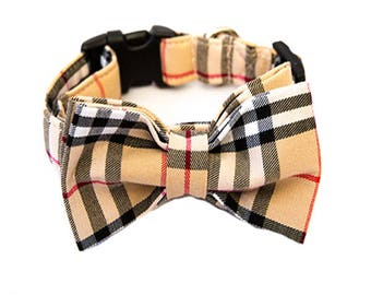 PawBerry Dog Collar, bow & Leash
