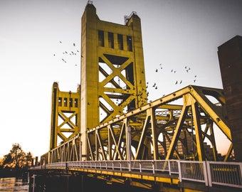 Sacramento Tower Bridge Sunset with Birds (8x10 Print)