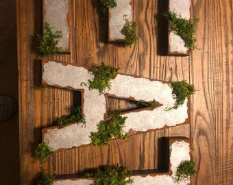 "12"" Faux metal letters with moss!"