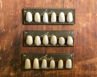 Steele's Resin Teeth on Card - Vintage Dentist Supply Oddity