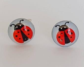 Lady Beetle Disk Stud Earrings