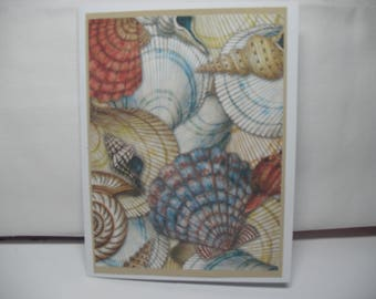 Sea Shell handmade Note Cards