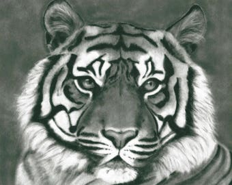 Monotone Wall Art - Black and White Print - Tiger Artwork - Monochrome Art - Tiger Poster - Tiger Picture - Animal Print - Grey Gray Print