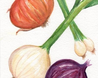 Onions watercolor painting original 5 x 7 kitchen decor, onions original watercolor painting, small vegetables watercolor wall art