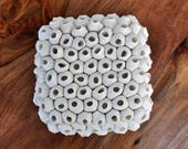 Barnacle -  Large Textured Wall Tile - Ceramic Wall Art, Ceramic Wall Hanging, Porcelain Wall Art