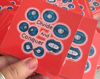 Divide and Conquer Cell Mitosis Sticker by Surly Amy Davis Roth