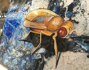 Painting: Drosophila Fruit Fly Resin Coated Acrylic on Canvas Original Art