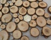 100 petites tranches de bois ~.5 à 1,25 pouce ~ arbre tranche assortiment, disques de métier, confettis de Table, pièces de mosaïque de bois, petit arbre de biscuits,