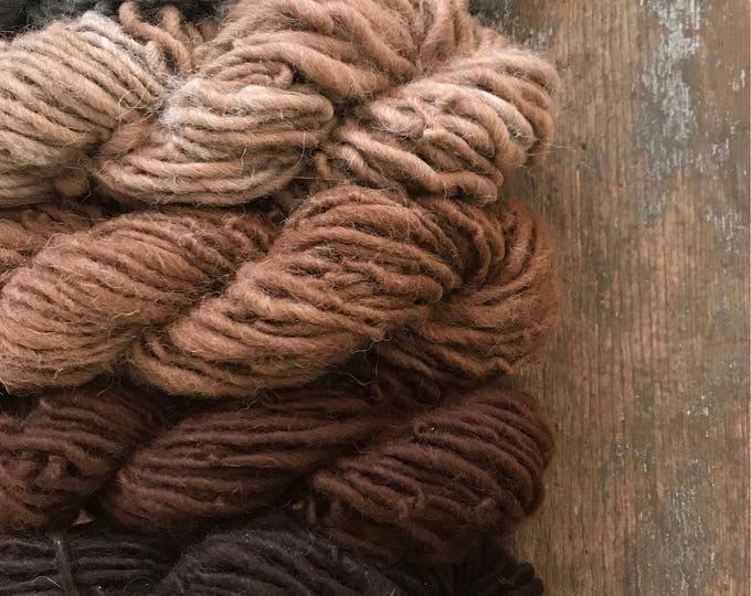 Natural auburn alpaca handspun yarn, undyed handspun yarn, ombre pack, 350 yards total, gorgeous alpaca gradient