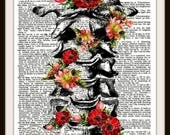 Floral Vertebrae-Cervical Spine from Blooming Human Anatomy Series~  Digital Artwork- 8.5x11