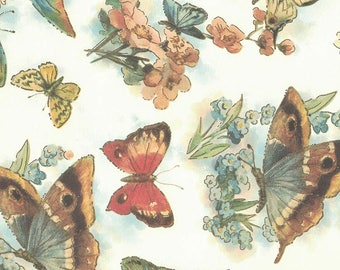 Bold Butterflies and Flowers Italian Print Paper with Gold Highlights ~ Carta Fiorentina Italy F049