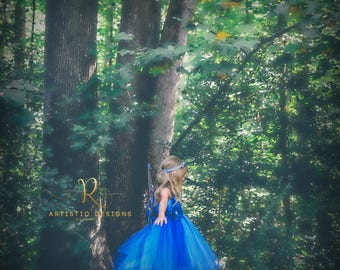 Butterfly Costume Woodland Princess Rustic Garden Fairy Wings Outfit Blue Cinderella Ball Gown Disney Princess Purple Tutu Dress Size 5 6 7