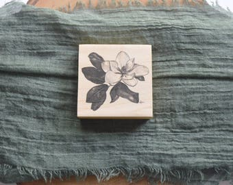 Magnolia Blossom Pen and Ink Drawing Fine Art Print on 3x3 Wood Panel