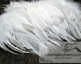 """White Feathers Cruelty Free Feathers Real Feathers Craft Feather Loose Feather Natural Feather Real Bird Feathers For Crafts 20 4-4.5"""" / WW8"""