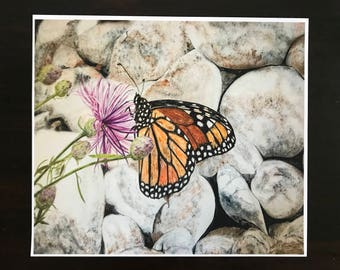 Fine Art Giclee Watercolor Print of a Monarch Butterfly on Rocky Shoreline of the Mackinaw Straits of Mackinaw Island by Janet Dosenberry