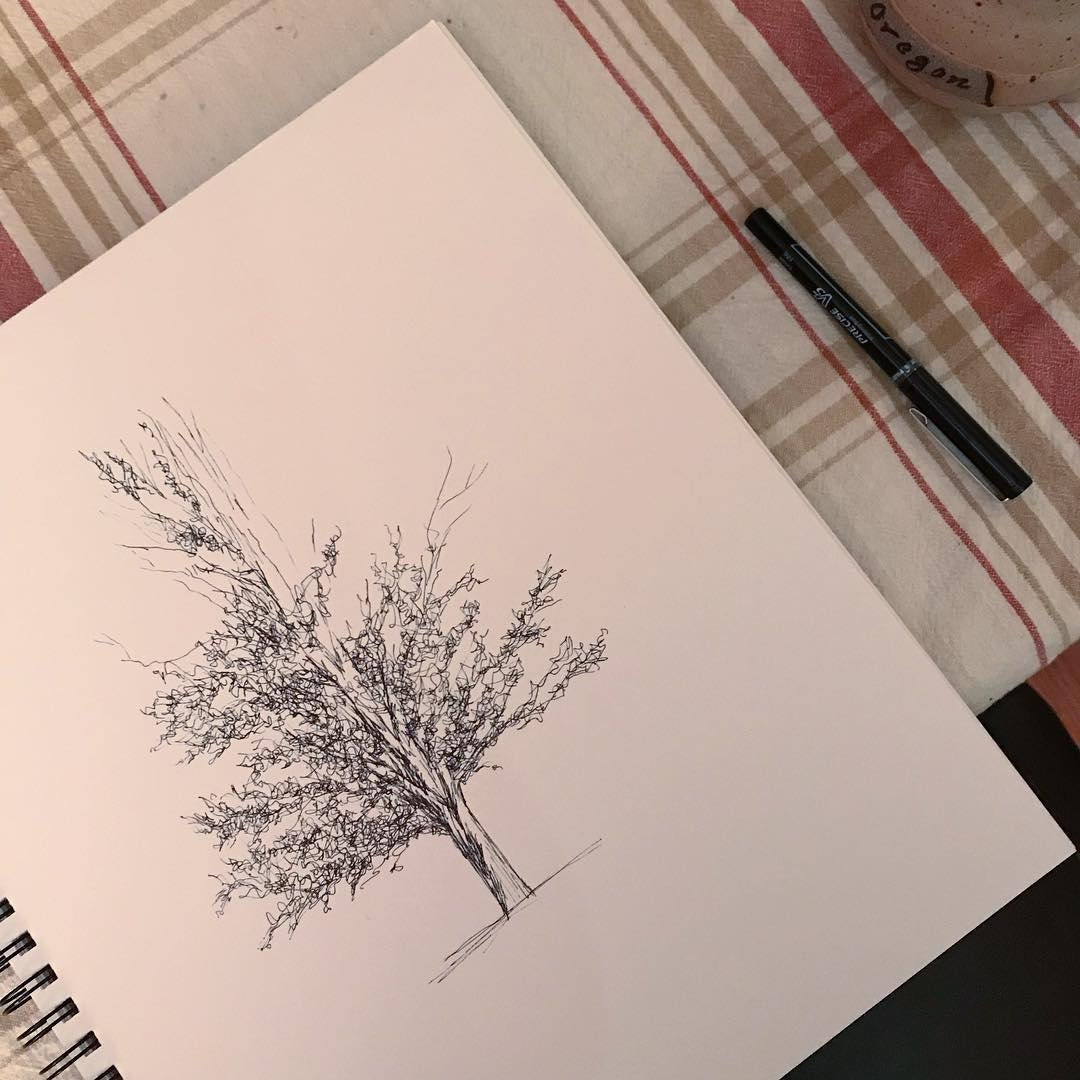 Birth of a tree portrait.