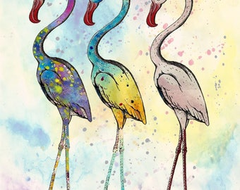 BEFORE AND AFTER art birds natur texture flamingos illustration