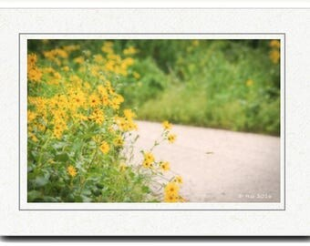 Country Road  Photography Card - Photography Greeting Cards - Wildflower Card - Yellow Flowers Photography Card