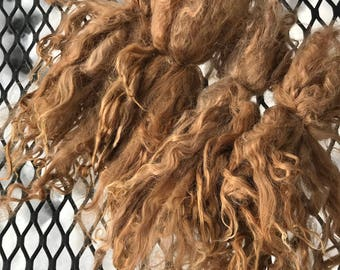 Long Suri Alpaca Locks, 8 Inches, Light Fawn, Abner