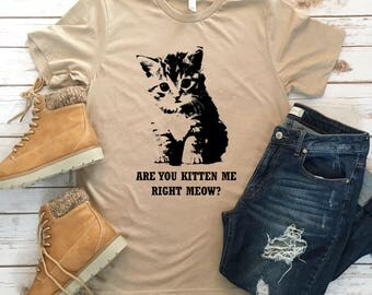 Are You Kitten Me Right Meow? - Funny Animal Pun Tees