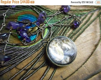 The Wysteria Necklace.  Genuine dried wisteria blooms under domed pendant & Amethyst crystal satellite Necklace. ooak