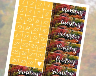 Fall in the Park Date Covers Planner Stickers Vertical Student - Stick to Your Story