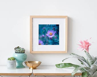 FLORAL ART PRINT - Purple Asters - turquoise teal purple wall decor - home decor - square art prints for home or office