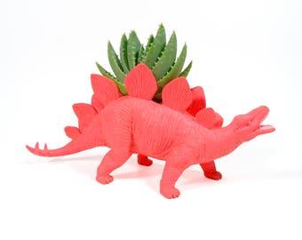 Hank the planted Stegosaurus - the Original Toy Planter